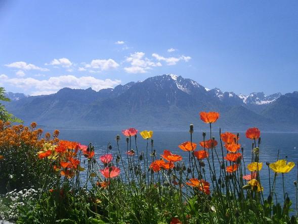Switzerland The World Most Beautiful Place Www Switzerland Com